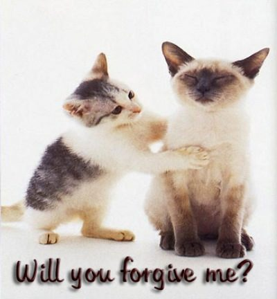 Will You Forgive Me Desicomments Com