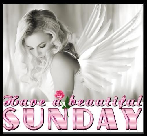 Have a beautiful sunday with angel
