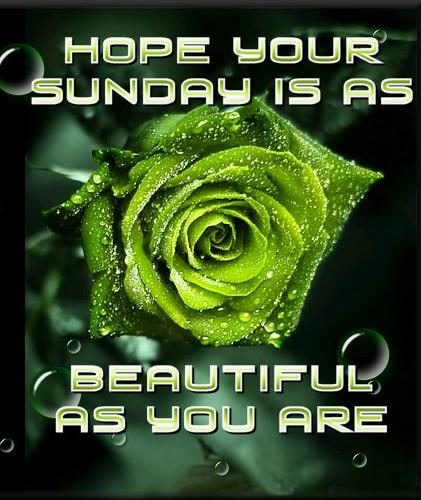Hope your sunday is beautiful