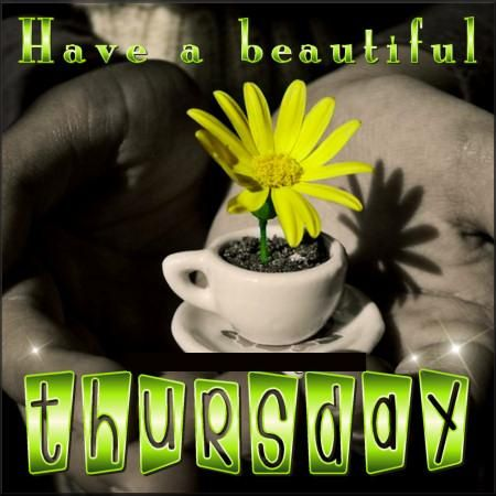 Have beautiful thursday