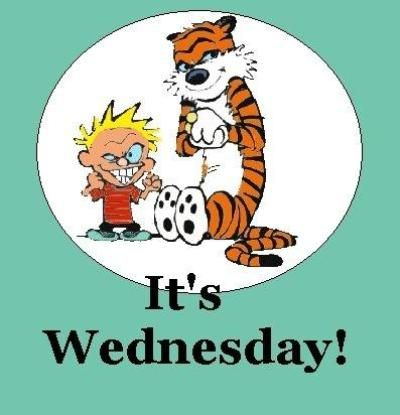 It's wednesday