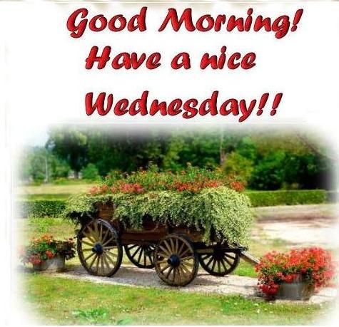 Have a nice wednesday desicomments com