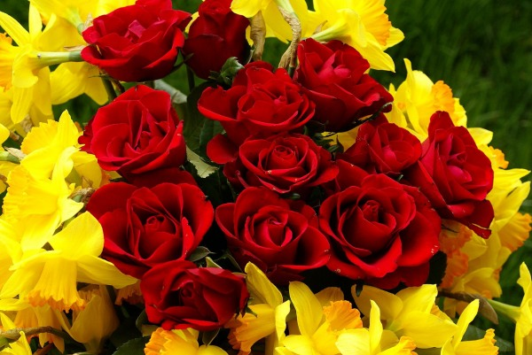 Red roses and narcissus bouquet
