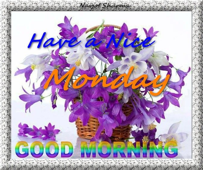 Good Morning Monday Picture Messages : Monday pictures images graphics for facebook whatsapp