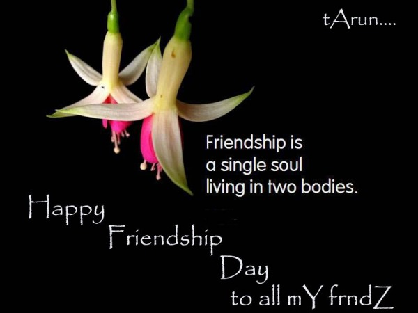 Happy Friendship Day To All Friends