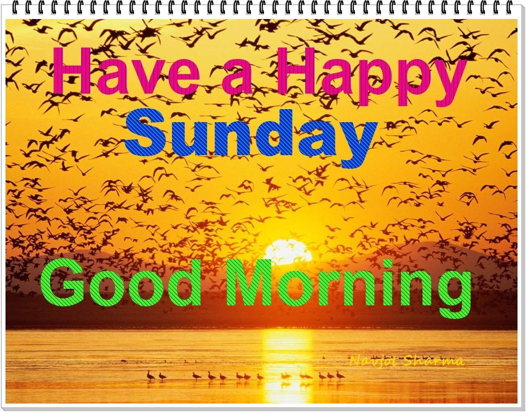 Good Morning And Happy Sunday Quotes : Happy sunday funny quotes quotesgram