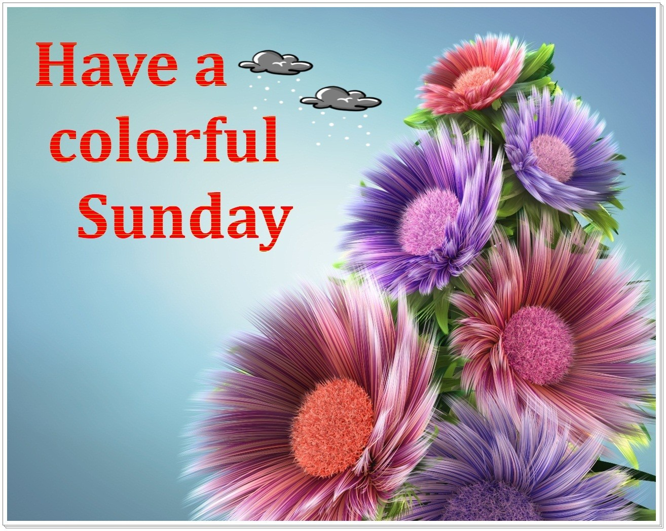 Have A Colorful Sunday - DesiComments.com