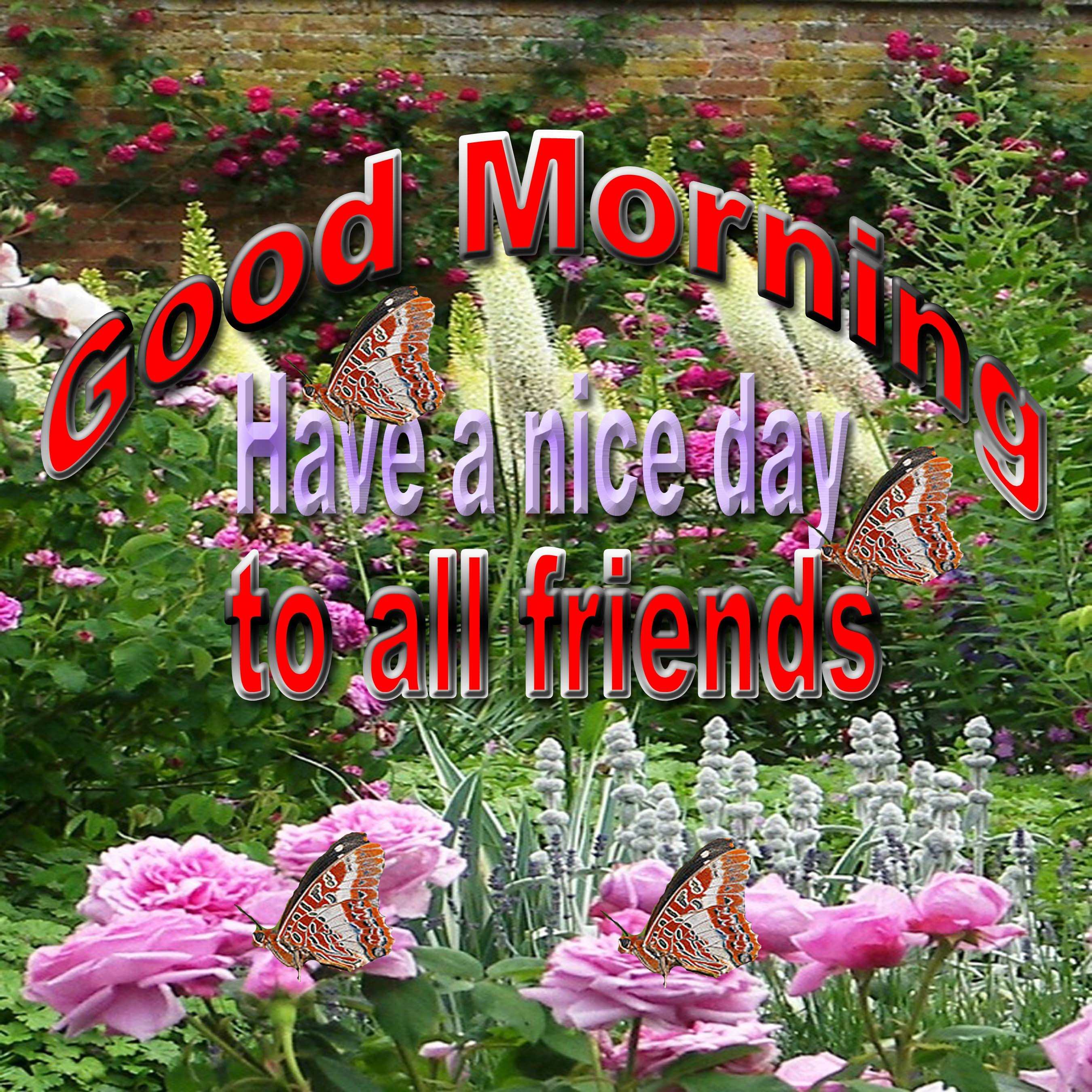 Good Morning To All FriendsGoodmorning Friends Images