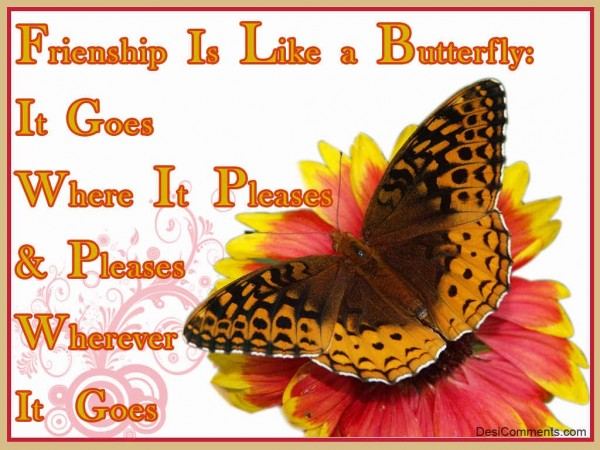 Friendship Is Like A Butterfly