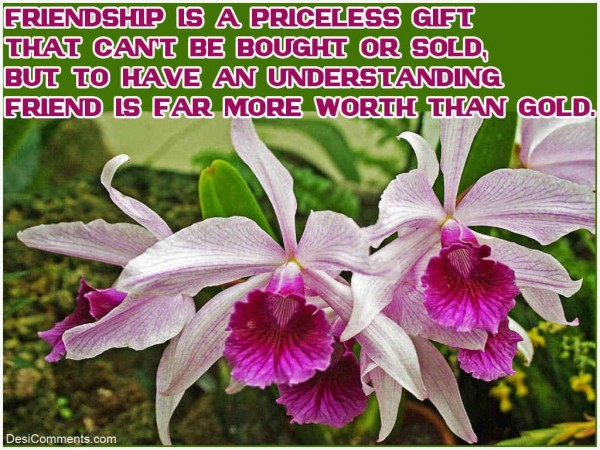 Friendship Is A Priceless Gift