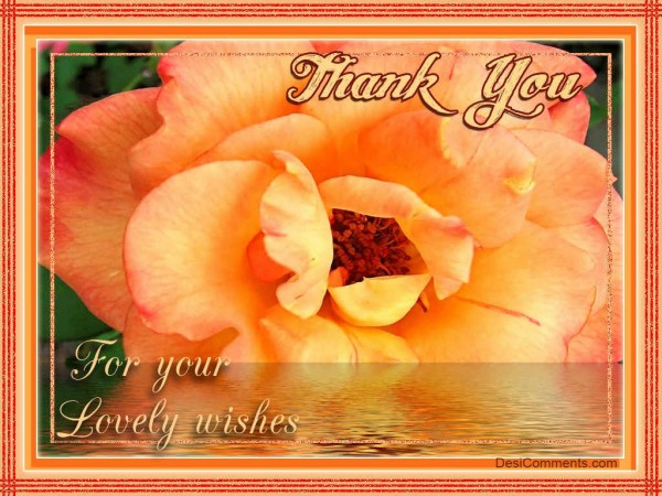 Thank You For Your Lovely Wishes