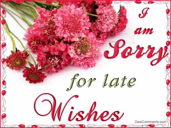 I Am Sorry For Late Wishes