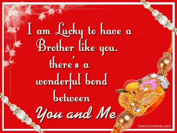 I Am Lucky To Have A Brother Like You