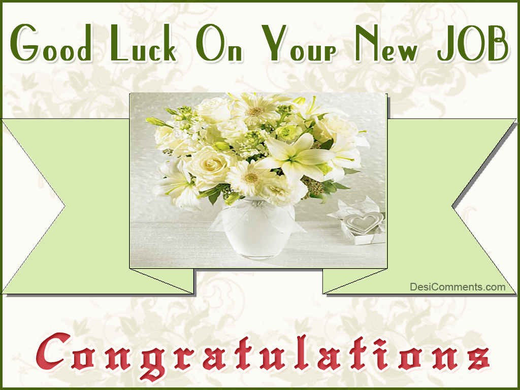 funny good luck quotes for new job images pictures becuo
