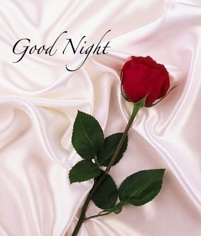 Good Night