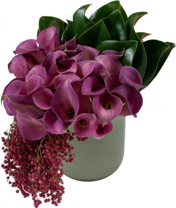 Purple Calla Lily Flowers