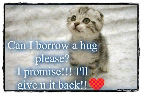 Can I Borrow A Hug Please?