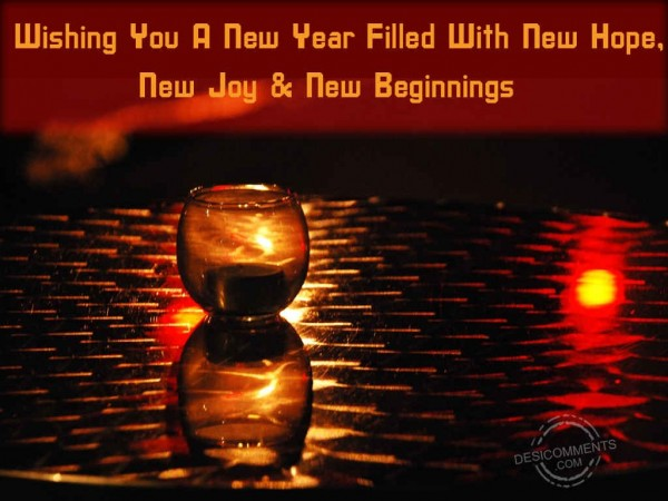 Wishing You A New Year Filled With New Hope,New Joy.
