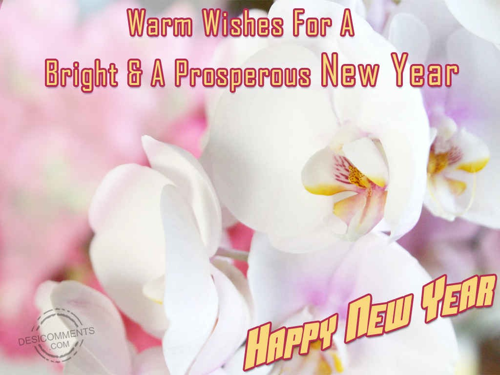 Warm Wishes For A Bright & A Prosperous New Year - DesiComments.com