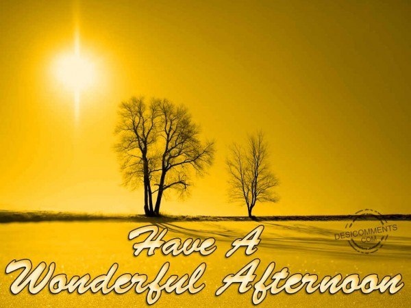 Have A Wonderful Afternoon