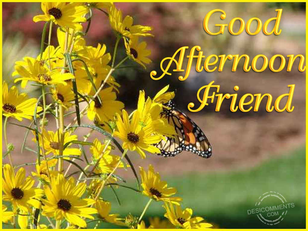 Good Afternoon Friend  DesiComments.com