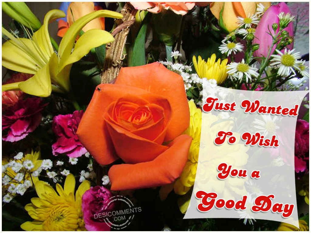 Wishing You A Good Day - DesiComments.com