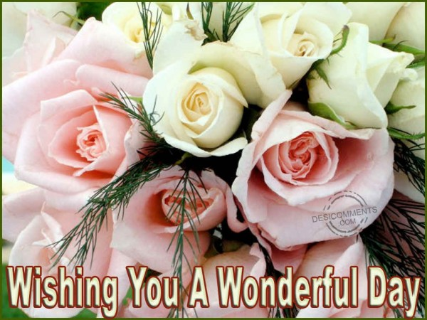 Wishing You A Wonderful Day