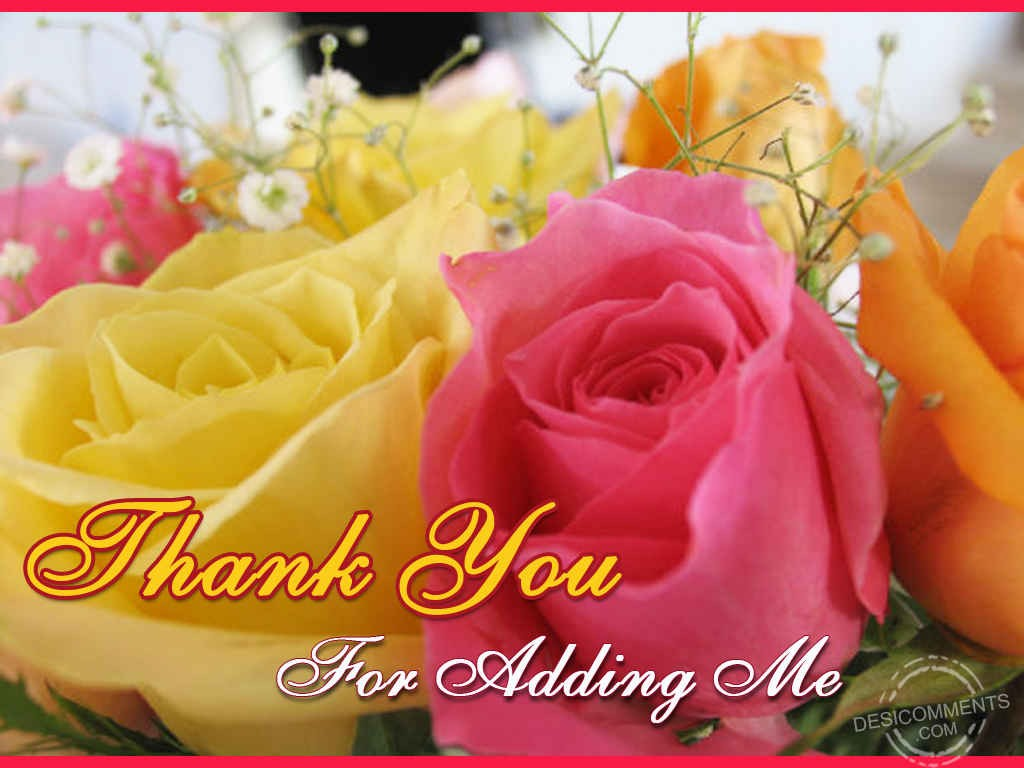 Image result for thank you for the add images