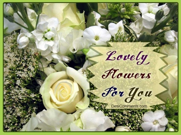 Lovely Flowers for you...