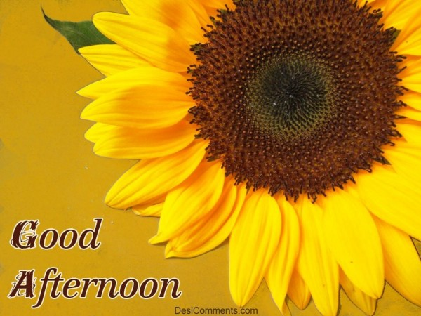 Wishing You Good Afternoon..,.