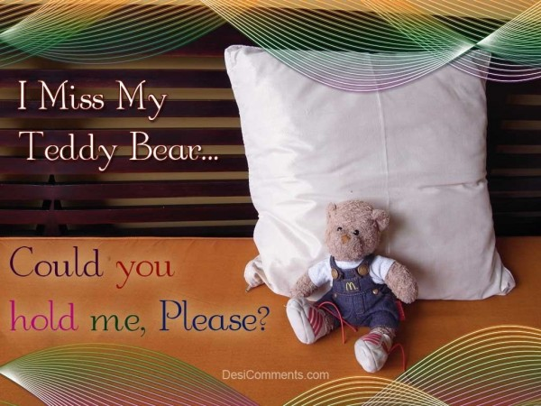 I Miss My Teddy Bear...