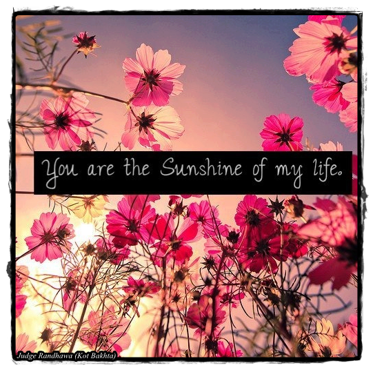 You Are Sunshine Of My Life