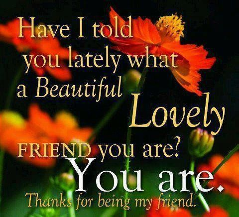 You Are A Lovely Friend