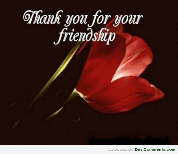 Your Friendship