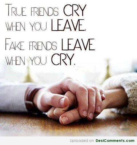 True And Fake Friends
