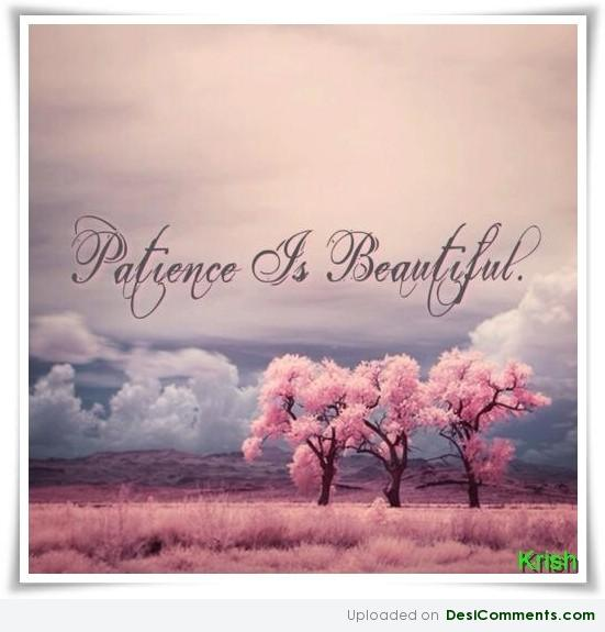 Download Wise Sayings About Life: Patience Is Beautiful