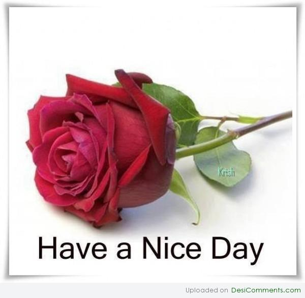 have a nice day pictures and images   page 5