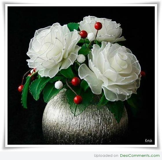 Cute white roses