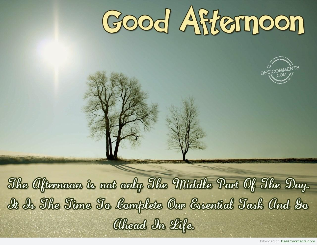 Wishing You A Very Good Afternoon - DesiComments.com
