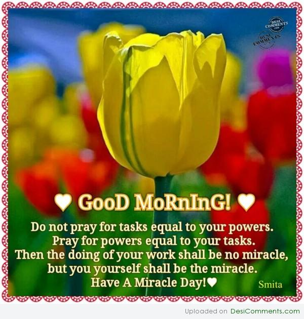 Have A Miracle Day!