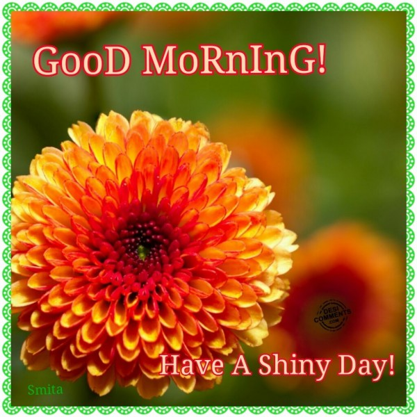 Good Morning - Have A Shiny Day