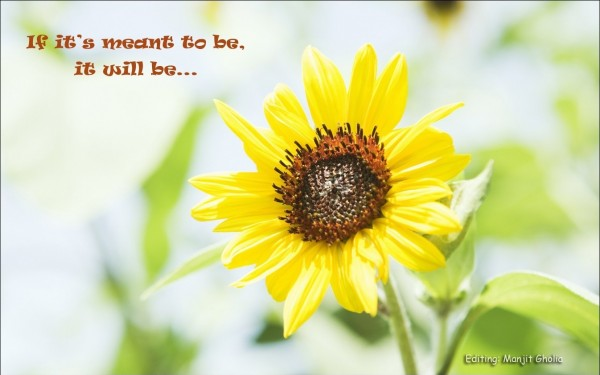 If it meant to be, it will be...
