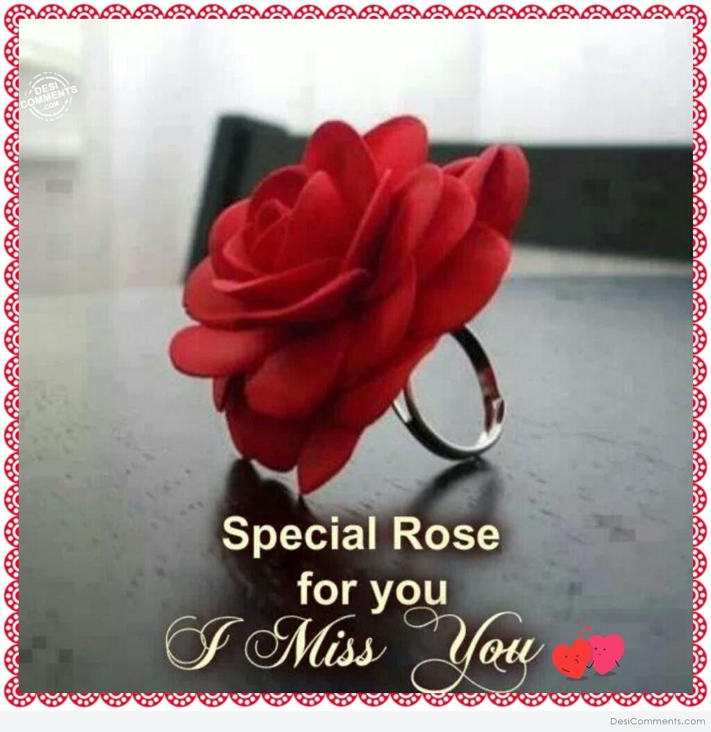 Special Rose For You I Miss You Desicomments Com