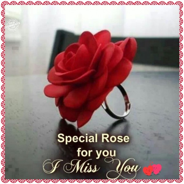 Special Rose For You - I Miss You