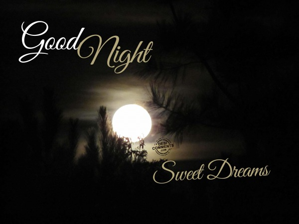Good Night, Sweet Dreams