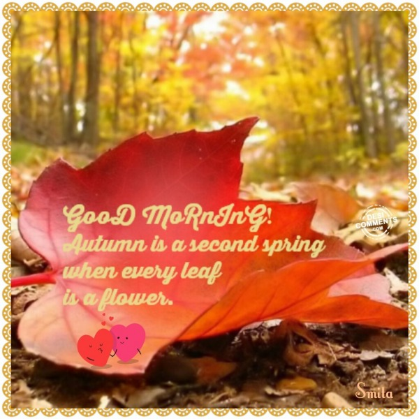 Good Morning - Autumn is a second spring...