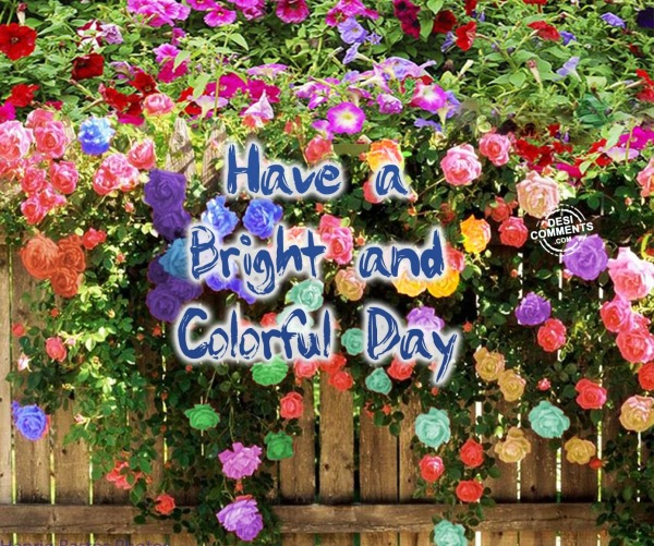 Have a bright and colorful day