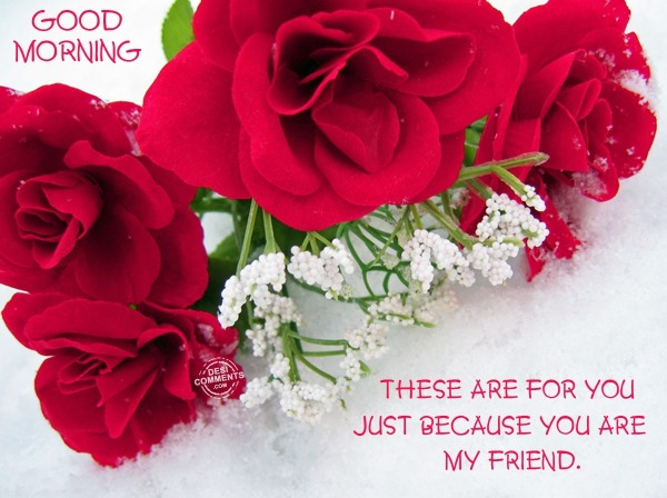 Good Morning - These are for you...