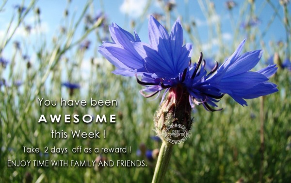 You have been awesome this week