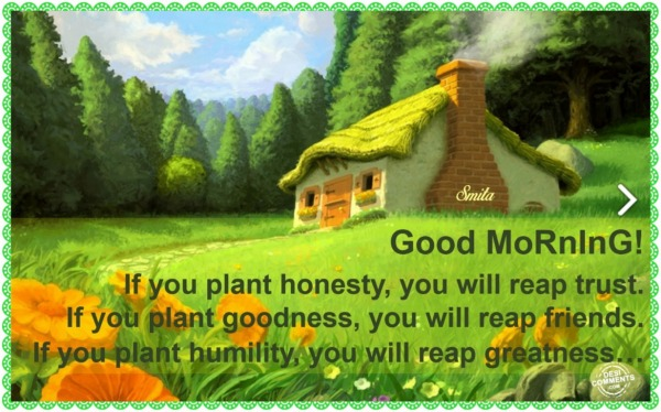 Good Morning - If you plant honesty...